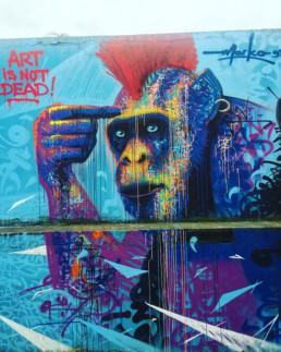 Monkey, graffiti, street art, wall, French, Marko93, Art is not dead